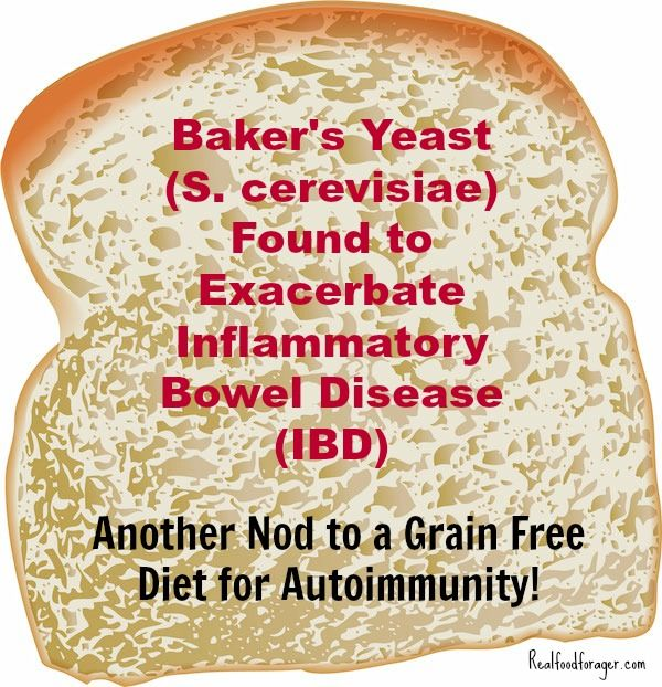 Baker's Yeast (S. cerevisiae) Found to Exacerbate Inflammatory Bowel Disease (IBD) – Another Nod to a Grain Free Diet for Autoimmunity! post image
