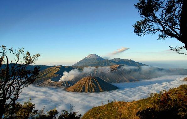 Обои на рабочий стол. Обои вулкан, туман, деревья, вид, Горы скачать.