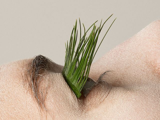 Designer Creates Natural Fake Eyelashes Using Foliage Found in a Local Forest | Junkculture