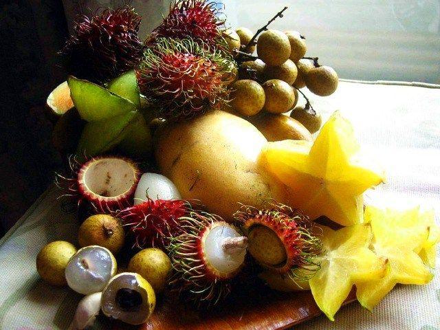 Экзотические фрукты, которые стоит попробовать http://feedproxy.google.com/~r/anymenu/hMaC/~3/d3fafzEEl2c/  Экзотические фрукты все проще купить в магазинах. Однако следует знать, что не все фрукты бывают съедобными. Как есть тропические фрукты и чего следует избегать? Манго или авокадо доступны в нашей стране на протяжении всего года и нет особых проблем с их покупкой. У манго сладкий, однако, слегка терпкий привкус. Подготовка к употреблению очень проста, ведь