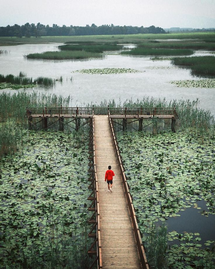 Efteni Lake in Düzce - Turkey /photography by Mücahit Muğlu