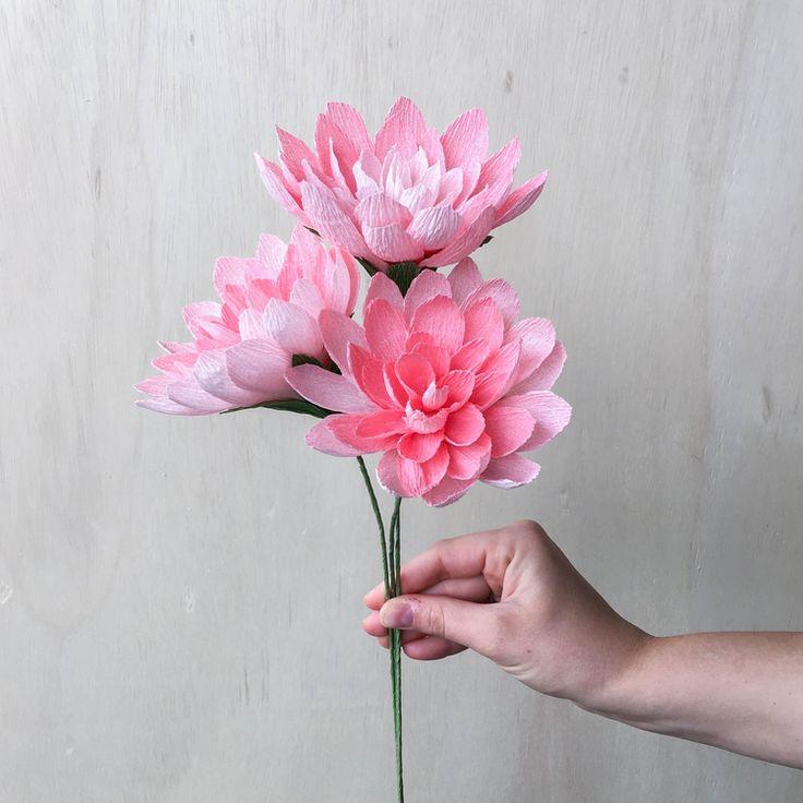 crepe-paper-flowers.jpg