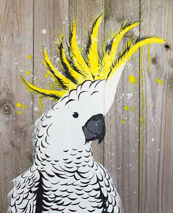 Sulphur crested cockatoo stencil painting on reclaimed wood by Maria Harding