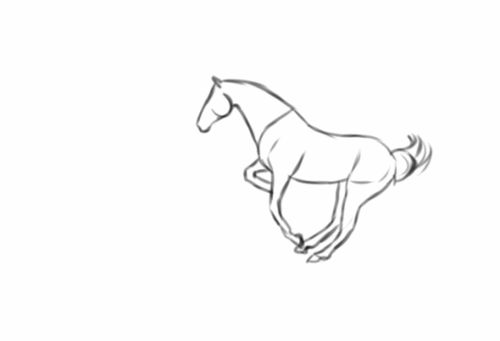 Mejores 39 imágenes de caballos en Pinterest   Dibujos de caballos ...