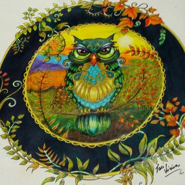 578 Best Encharted Forest Colouring Book Images On Pinterest