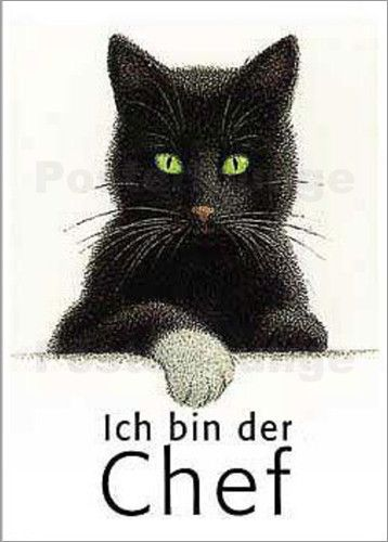 """""""Ich bin der Chef"""", by Quint Buchholz - Kater Nero als Chef"""