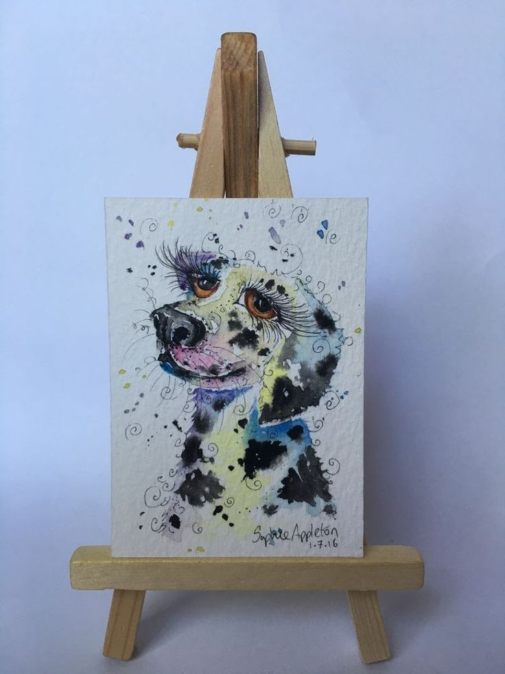 Original Watercolour Painting ACEO miniature DALMATIAN DOG by Sophie Appleton #ACEOartcards
