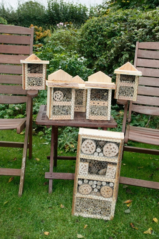 Bee boxes made for and donated to the local charity shop Ferne Animal Sanctuary #ferneanimalsanctuary #charity