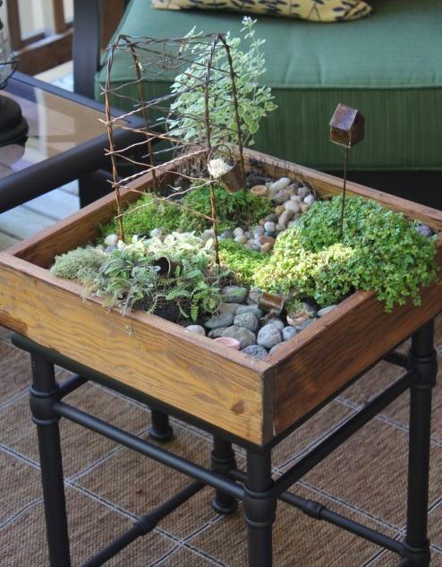 DIY (backyard) - tabletop mini garden - www.shelterness.com