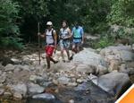 Desde el pueblo comenzaremos nuestra caminata a través de la selva baja caducifolia o veranera de Vallarta, donde podremos observar diferentes especies de plantas, aves, mariposas, pequeños reptiles y mamíferos.