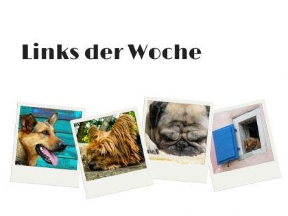 Links der Woche #01 – Urlaub mit meinem Hund  #hunde #dogs #urlaub #reisen #travel