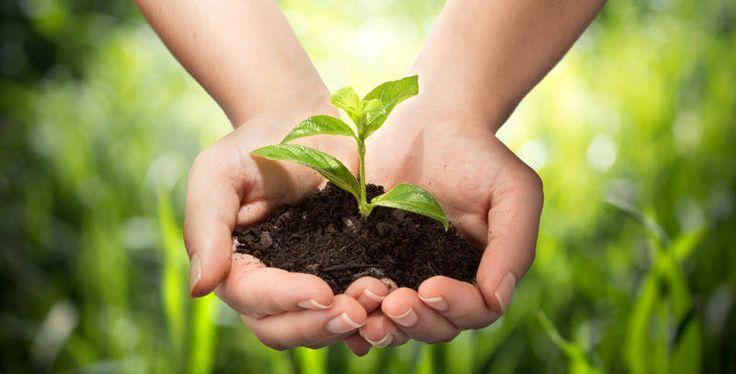 Ce înseamnă pentru noi durabilitatea unei izolatii?