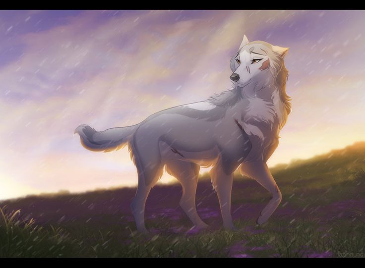 Wolf mating anime
