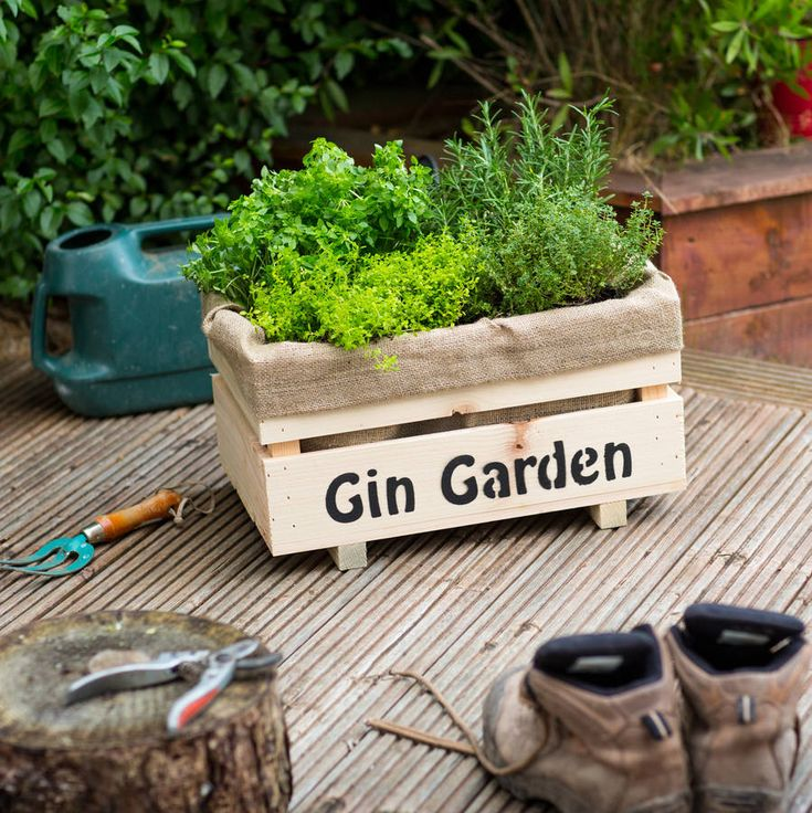 Ginalicious Gin Botanical Cocktail Complete Garden. After a hard day weeding, watering and getting back to mother nature, what better reward than picking fresh ingredients for delicious home-made tipples?