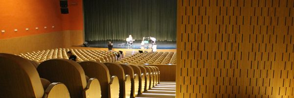 Lambris et conditionnement acoustique pour l'Auditorium de Logro�o