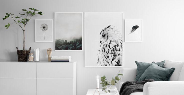 Poster bestellen | Poster shop | Desenio.de