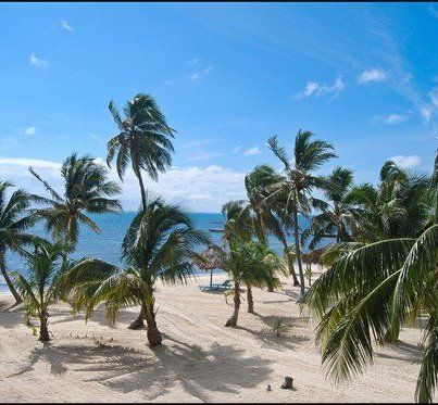 Beach front Land for sale in Mahaual, QROO