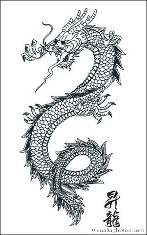 Wallpapers Images Photos Pour Dessin Dragon Chinois Tatouage