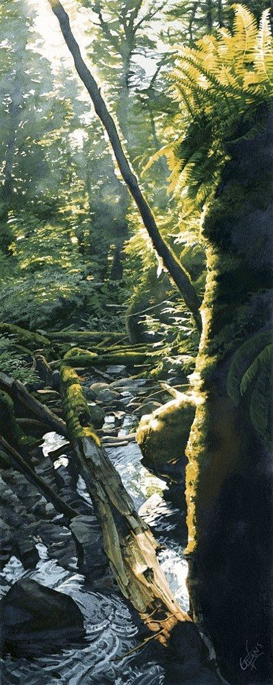"""WATERCOLOR with amazing realism by Carol Evans. Stream in Shimmering Sun    """"As sunshine glints and glances off twig, leaf and stone, the little forest valley is awash in light. At its feet an eager stream rushes down in full flight towards Tenedos Bay and out to sea."""""""