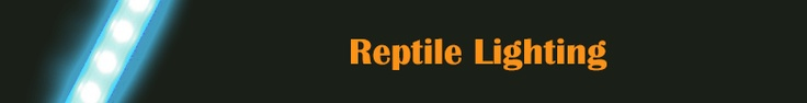 Reptile Lighting Equipment - http://www.kjreptilesupplies.co.uk/lighting-c1  At KJ Reptile Supplies we stock a full range of Reptile lighting products for your reptile or aquarium lighting needs.  This range includes Uvb reptile tubes, compact lights, Reptile LED Lighting etc for all your reptile needs at low price and fast delivery.