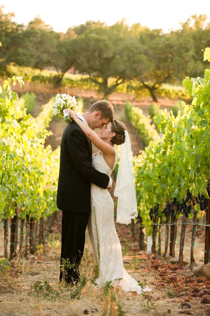 A stunning Paradise Ridge Winery vineyard wedding photo by Loic Photography