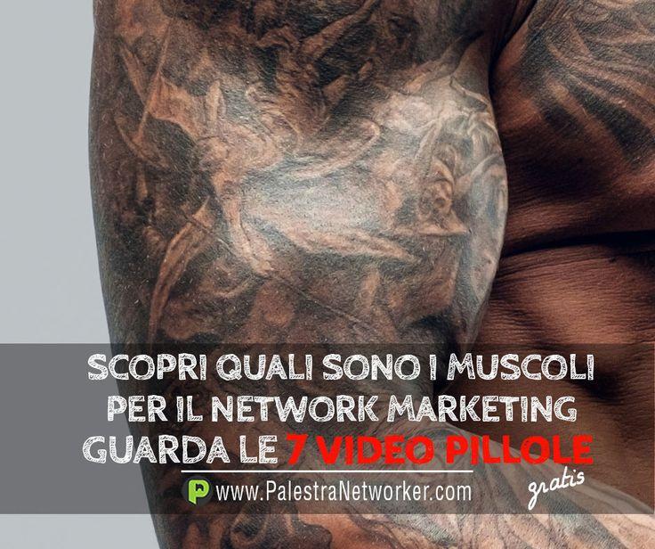 Hey NETWORKER non allenare i muscoli sbagliati! 7 Video Pillole sul Network Marketing (GRATIS) GUARDA => http://www.palestranetworker.com . . .  #networker #networkers #networkmarketing #palestranetworker