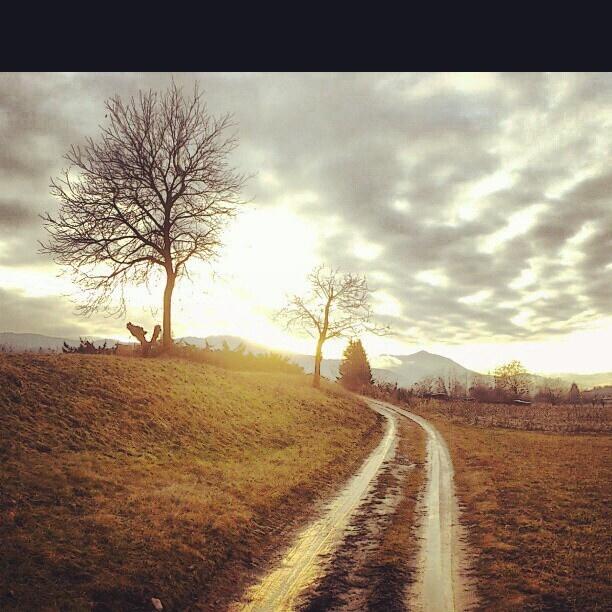 countryside near belluno