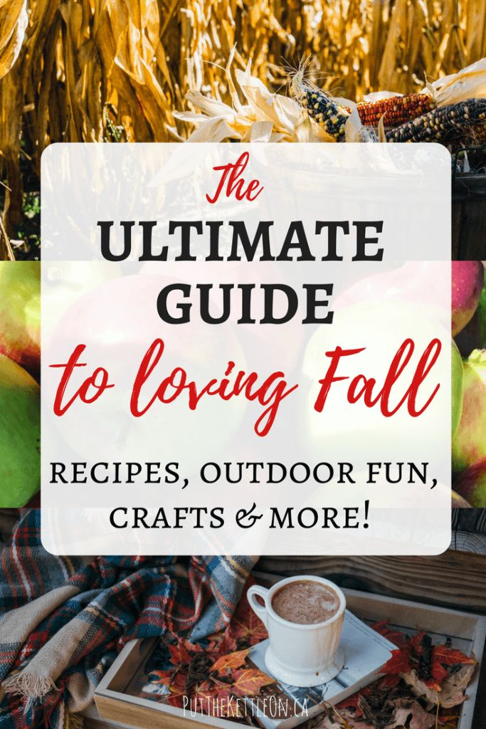 The Ultimate Fall Guide. Ideas to love Fall, with recipes, outdoor activities, family fall crafts and more. Enjoy the Beautiful Fall Season Now!