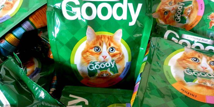 """can dostun kedinle sağlıklı, mutlu, huzurlu ve enejik bir yaşam sürmen için goody, bifincan'da seni yeni bir beslenme konforu ile tanıştırmak istiyor. goody neden """"dört dörtlük"""" besin, bilmek istemez misin?"""