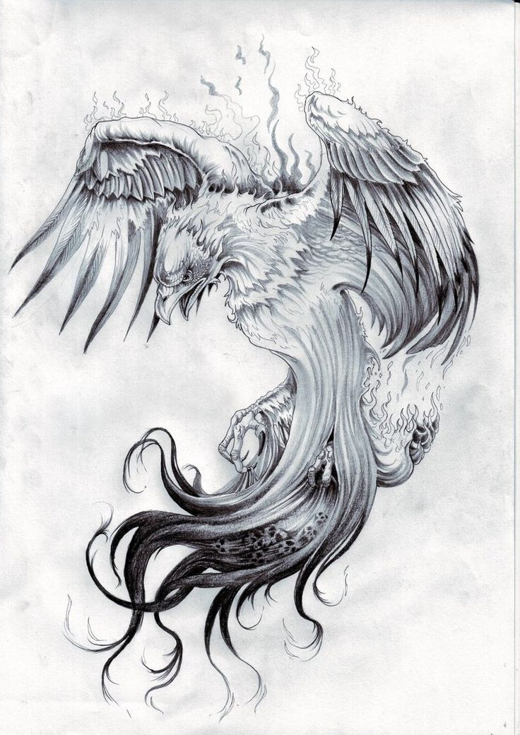 phoenix tattoo - is that smoke rising?