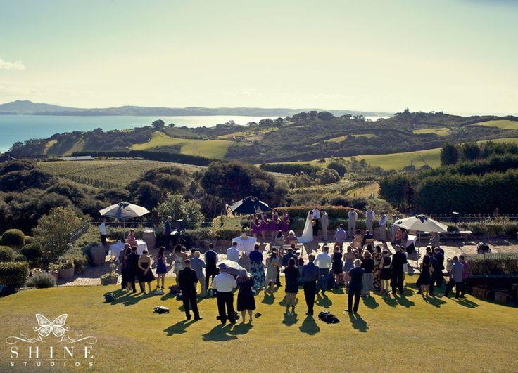 Auckland Wedding Venues   Mudbrick Vineyard