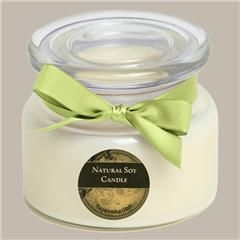 Rejuvenation $32.95. An uplifting and rejuvenating blend of bergamot, lemon and orange mixed with exotic verbena, lavender, geranium and fir needle essential oils. Completely non-toxic with a burn time of up to 85 hours.