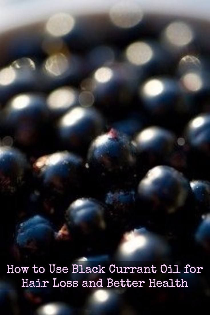 Black currant oil is an unusually powerful nutritional oil with many health benefits.    Ahead is how the gamma linoleic acid and other nutrition in black currant seed oil may help treat and prevent thinning hair, the best dosage for hair loss and other potential benefits of black currant oil.