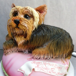 Yorkie cake - can you imagine?
