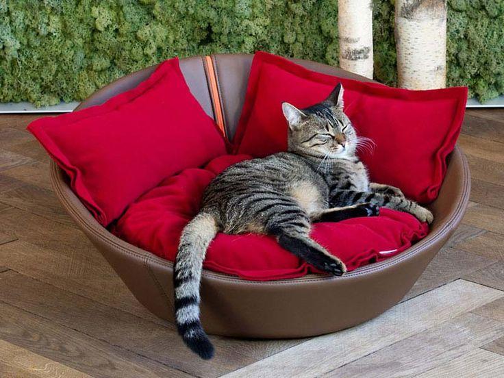 Cuccia per cani ecopelle in qualità high-end e di grande design!