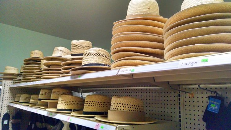 Weekly Blogroll:  Briana's Fun Soup,  Meemaw Visits an Amish Store,  Haystack, Snitz, and A Beautiful Drive