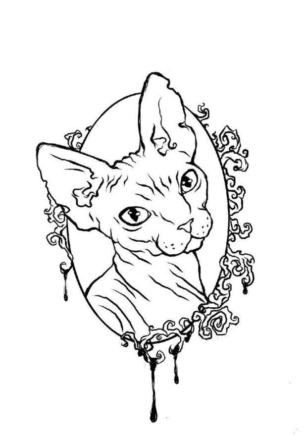 Раскраска кошка сфинкс | Татуировки с кошками, Тату с ...