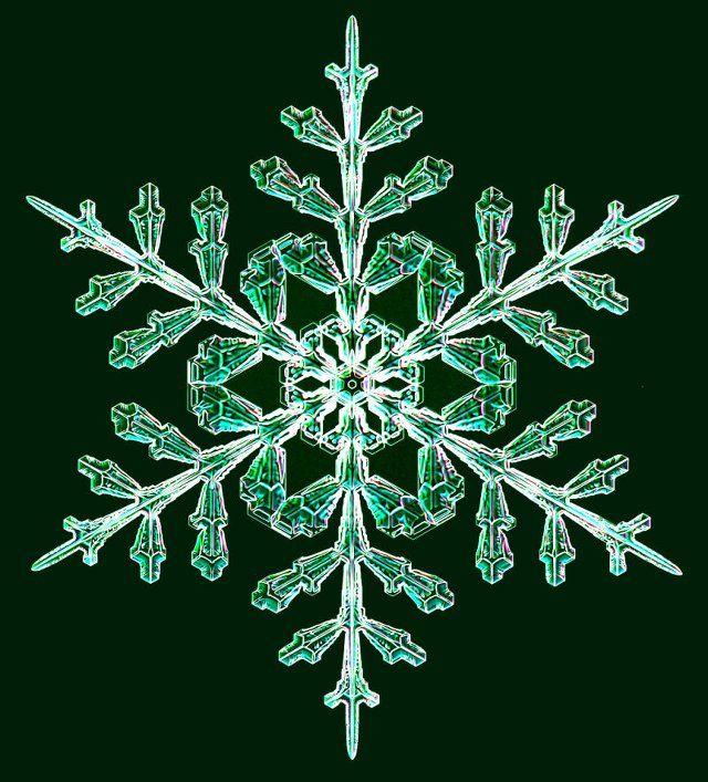 宝石みたい。研究者が数年にわたり記録した雪の結晶たち 9