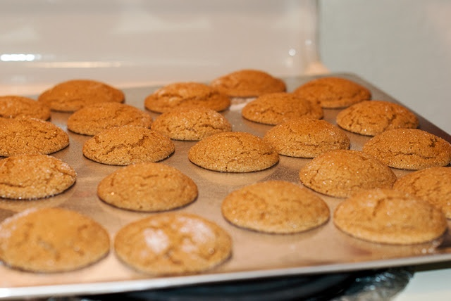 soft and gooey gingersnaps - a staple ever Christmas now!