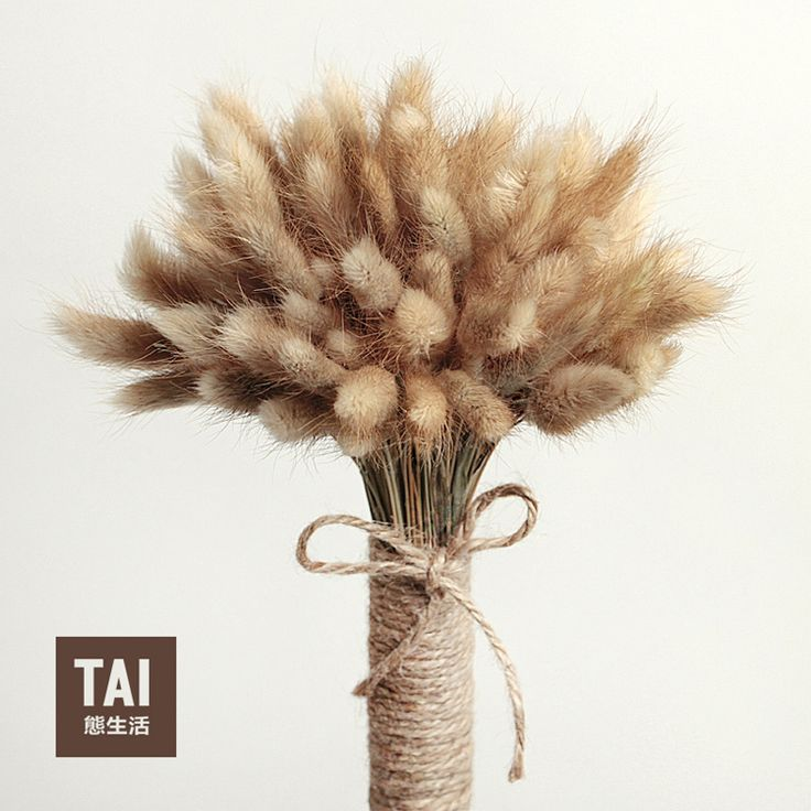 100pcs/lot Decorative Flowers Bouquet Rabbit Tail Grass Natural Dried Flowers for Retro Nostalgia Filming Props FREE SHIPPING-in Decorative Flowers & Wreaths from Home & Garden on Aliexpress.com | Alibaba Group
