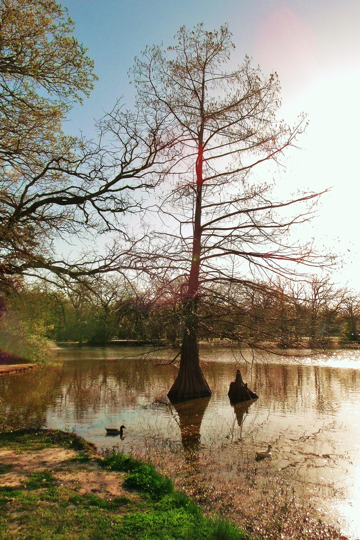 Central Park, College Station, Texas