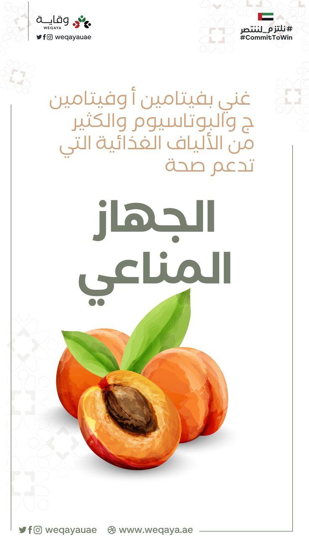 تعرف على فوائد المشمش الصحية Fruit Food Cantaloupe