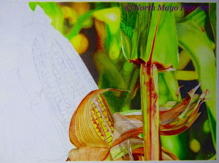 'The Dulcet Tones of Autumn' WIP 10. I've completed the leaves and am now onto the upper section of corn