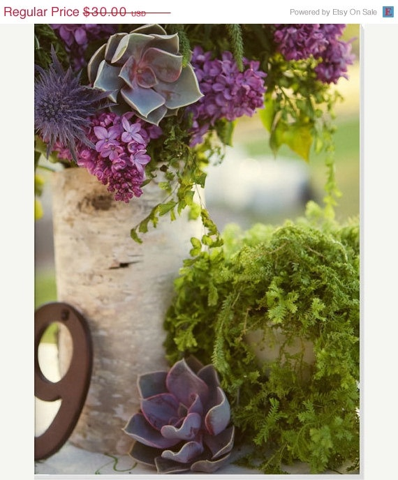 Download Wallpaper How To Make Birch Bark Vases Full Wallpapers