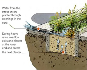 stormwater planter 2.bmp (358×290)