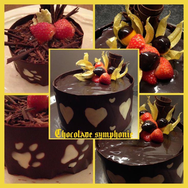 Chocolatemousse cake with a chocolate collar