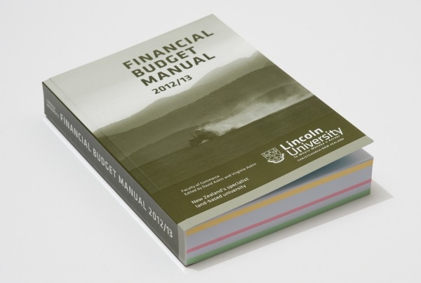 Financial Budget Manual