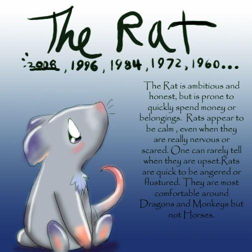 Zodiac The Rat by Dei--dara.deviantart.com on @deviantART