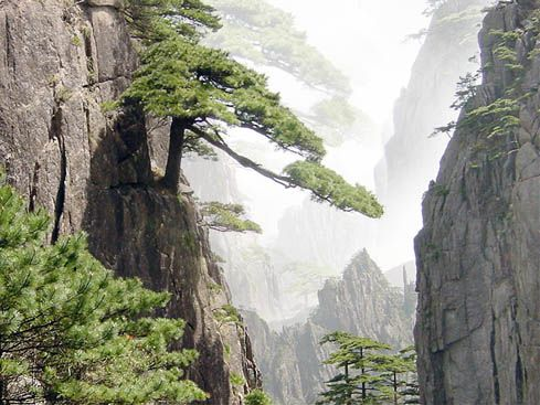 ... china situated in southeastern china mt huangshan yellow mountain