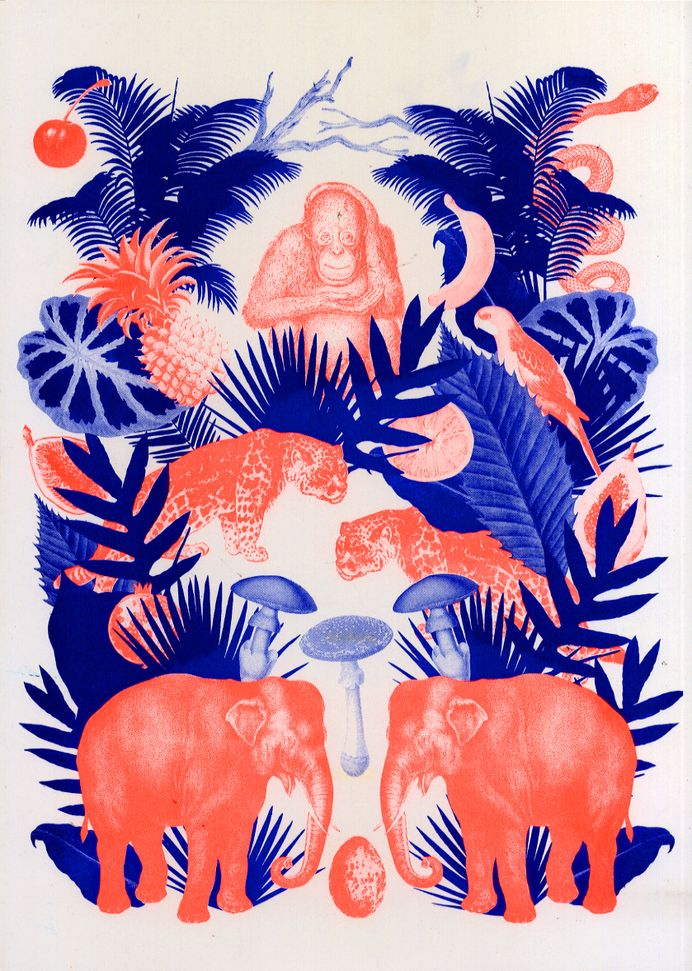 Illustration / Deep Forest - kellyc Riso Print